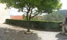 In tipica casa ligure 2 alloggi con grande terrazzo, solarium, giardino e box auto a  per