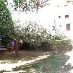 Albenga ampio 3 locali angolare con ampio giardino cintato. a  per