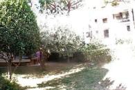 Albenga ampio 3 locali angolare con ampio giardino cintato.