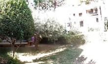 Il giardino.